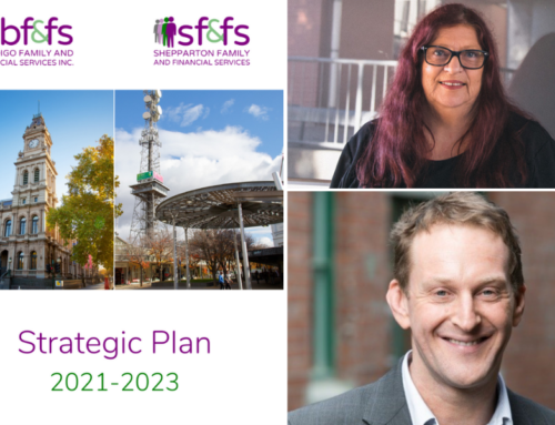 New strategic plan sets direction for BFFS